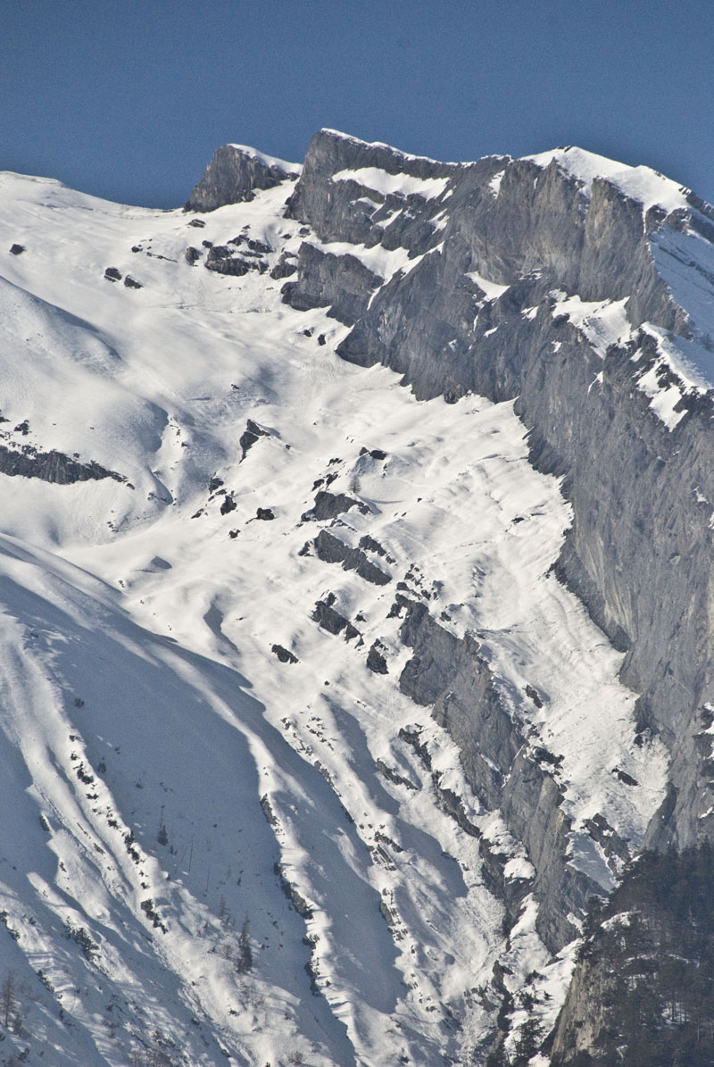 Austrian Avalanch