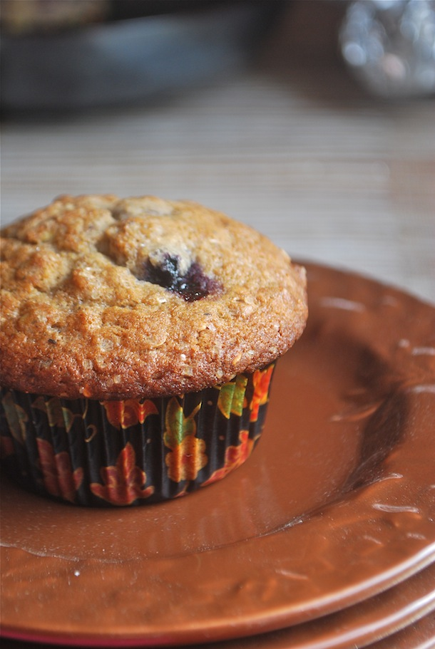 Blueberry Spice Muffins