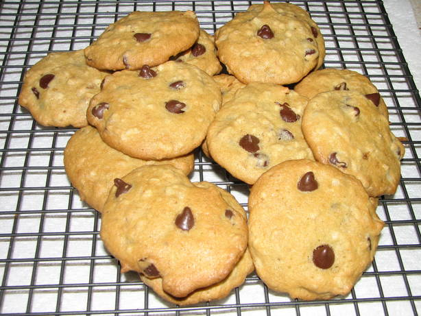 Chocolate Chip, Oatmeal, Walnut and Coconut Cookies