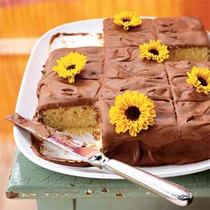 Chocolate Sheet Cake With Chocolate Frosting