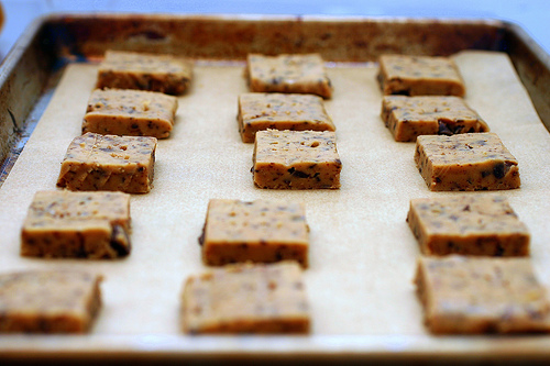 Chocolate Shortbread Squares