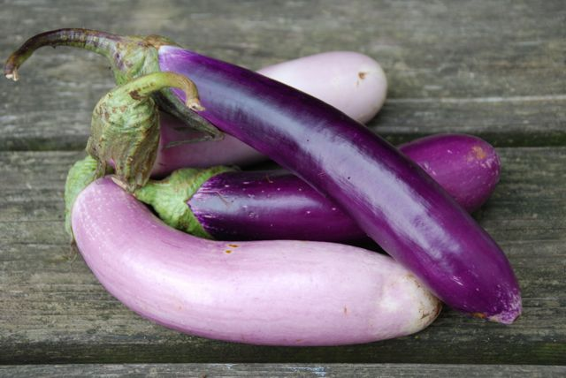 Ingridients of Eggplant -- Easy, Good and Tasty: