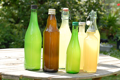 Elderflower Cordial Concentrate