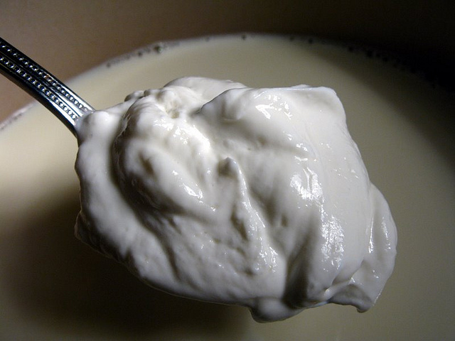 Homemade Greek/Balkan Style Yogurt