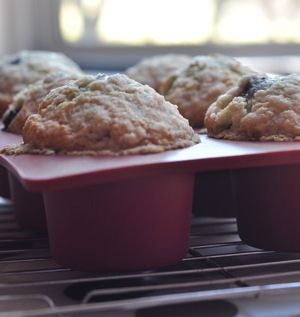 Melt in Your Mouth Blueberry Muffins