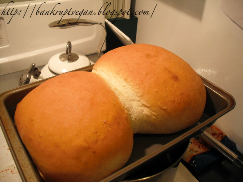 Outrageously Easy Big Bread
