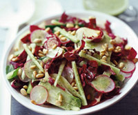 Radicchio, Radish, and Fennel Salad