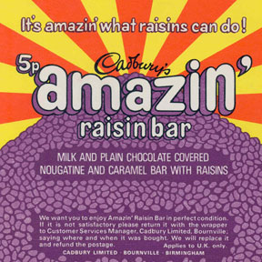 Raisin Caramel Bars