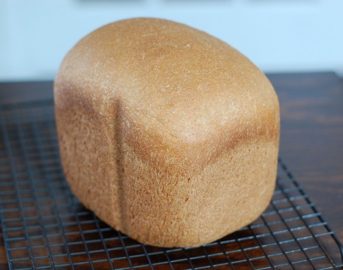 Whole Wheat Sandwich Bread for Bread Machine