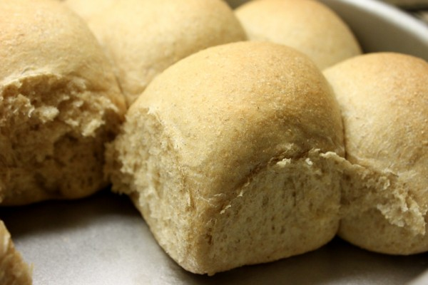 Whole Wheat Soft Dinner Rolls
